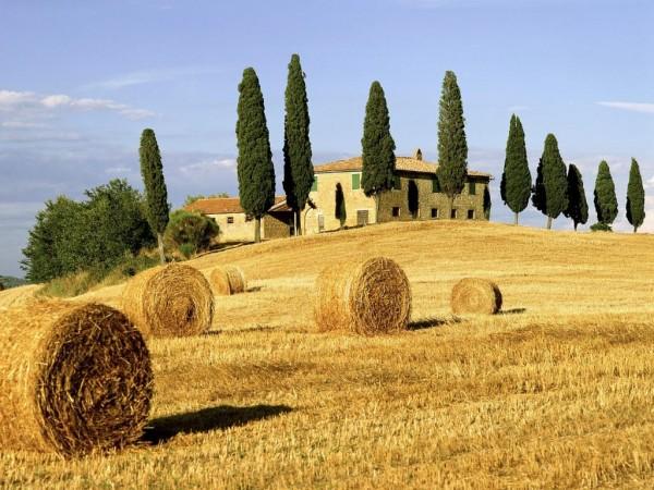 Testo unico sul sistema turistico regionale - Studio Mancuso 2000 - geometra Andrea Mancuso - Firenze
